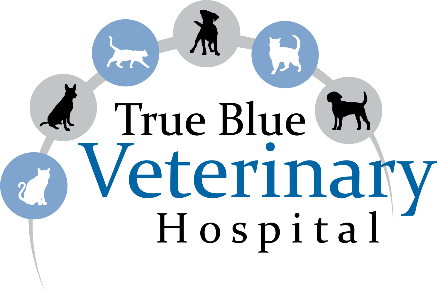 True Blue Veterinary Hospital
